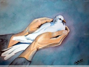 blancapaloma