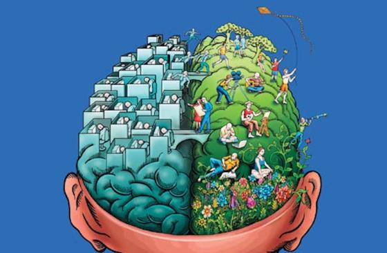 cerebro-3.png