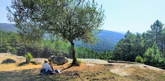 Alto da Portela (400 mts.) Inmediaciones de Rubiaes-caminho.jpg